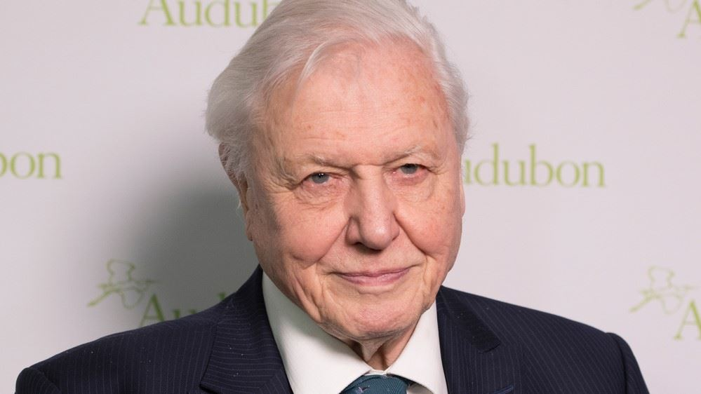 The positive effect of David Attenborough's documentaries